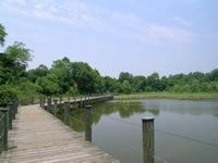 Schoolhouse Pond Boardwalk